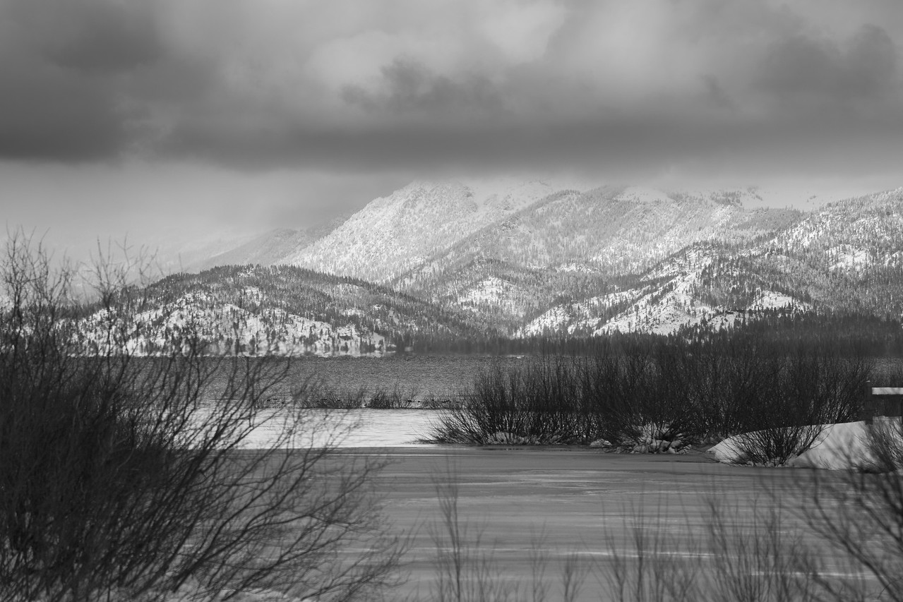 Through the Willows and Across the Lake from the Frozen Mouth of the Upper Truckee
