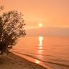 Rim Fire Sunset