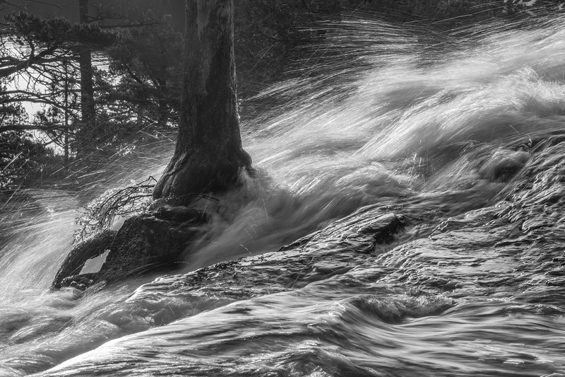 Cold Water Moving Around a Granite Tree Island