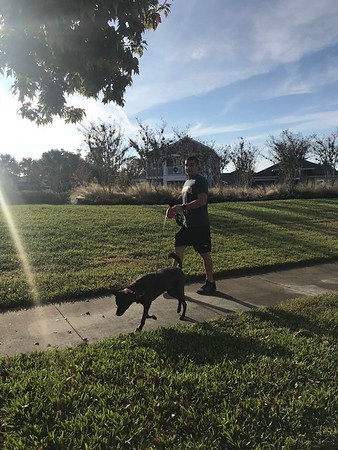 Rory walking Mello - nice Christmas weather, eh?