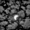 Solar Eclipse Crescent B&W