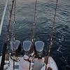 DTP_3288 Joe Leone Jr Fights Sail 2