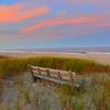 Sunlit Dunes 0333