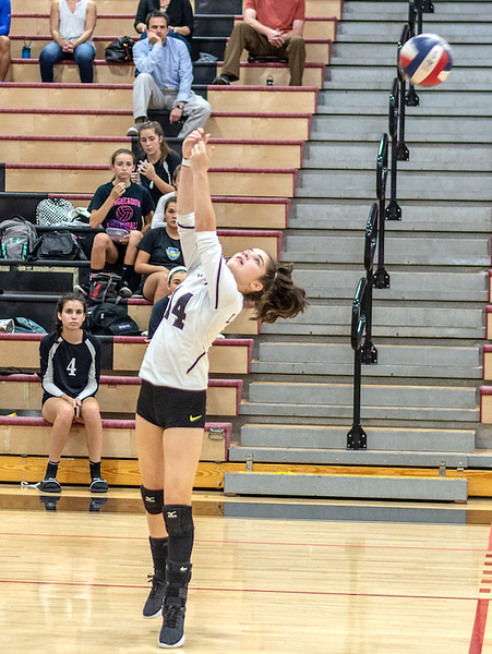 LHS Volleyball at Westfield