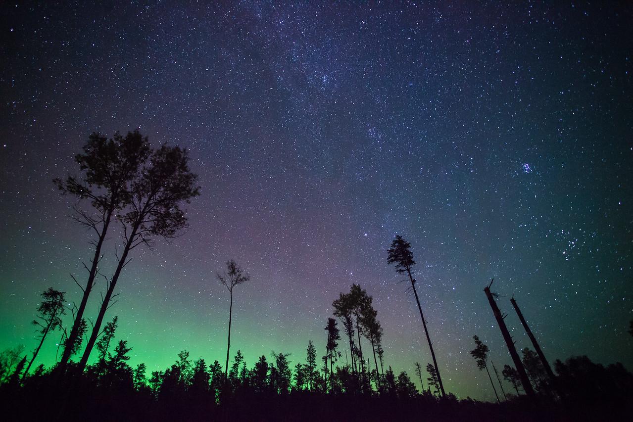 """AURORA 9911<br /> <br /> """"Aurora over Aspens""""<br /> <br /> September 27, 2014"""