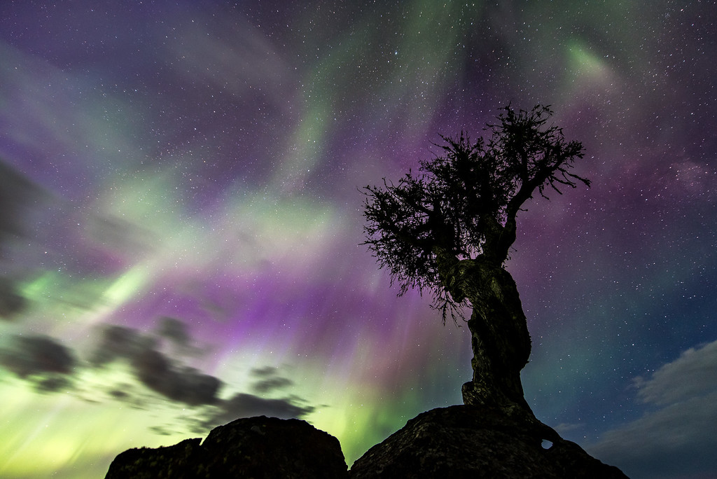 """AURORA 7840<br /> <br /> """"Mother's Day Treat""""<br /> <br /> Northern Lights on Mother's Day 2016"""
