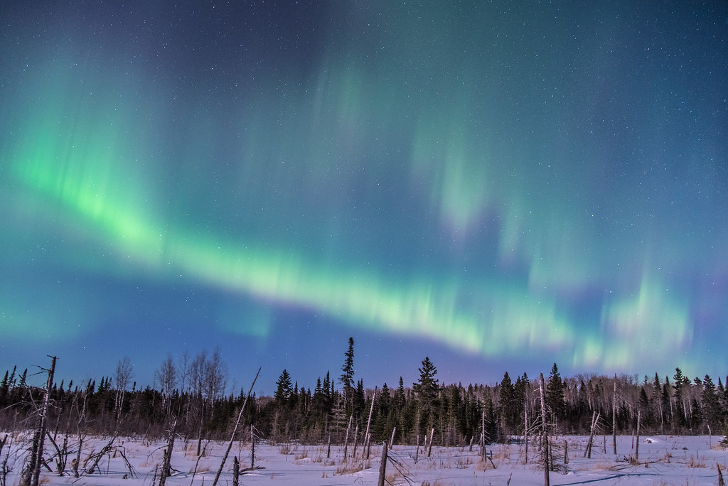"AURORA 0339<br /> <br /> ""3 A.M. Surprise""<br /> <br /> Northern Lights on March 2, 2015"