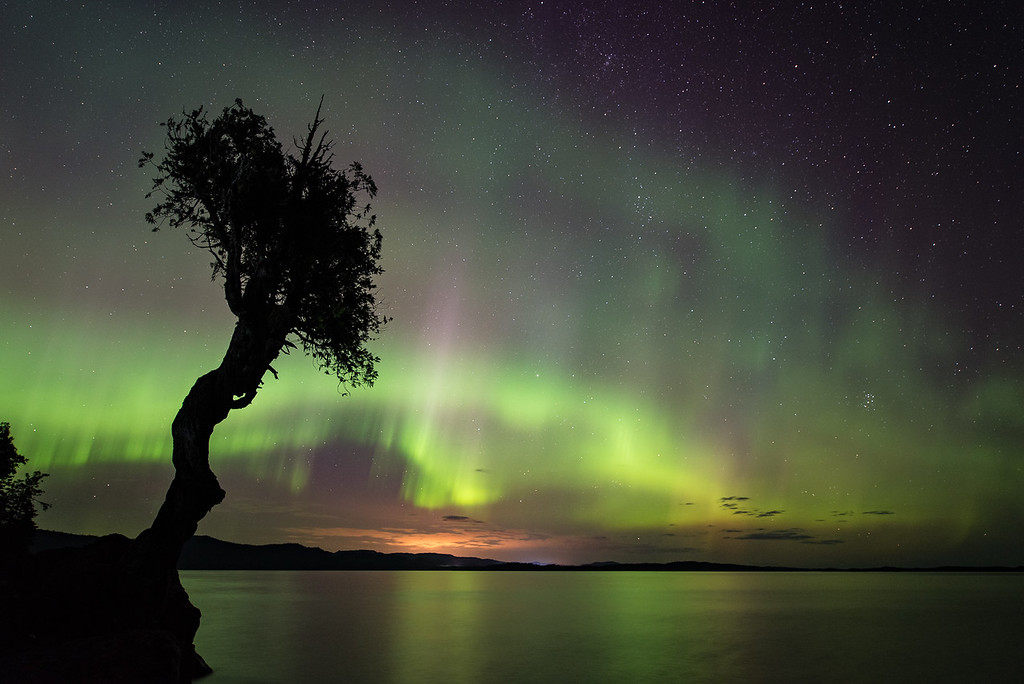 "AURORA 9029<br /> <br /> ""August Aurora and the Spirit Tree""<br /> <br /> Grand Portage, MN - August 3, 2016"