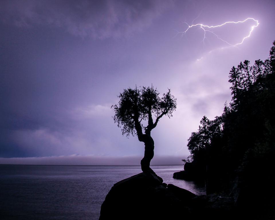 """LIGHTNING 5106<br /> <br /> """"Midsummer Storm at the Spirit Tree"""""""