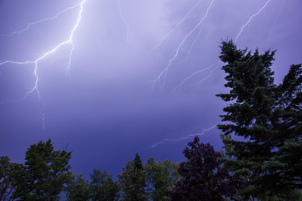 """LIGHTNING 9245<br /> <br /> """"Bolts and Trees"""""""