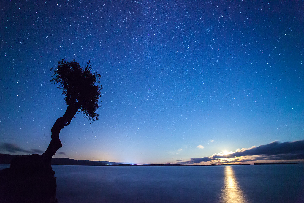 "MOONLIGHT 9050<br /> <br /> ""August Moonrise and the Spirit Tree""<br /> <br /> Grand Portage, MN"
