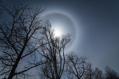 """February Moon Ring"""
