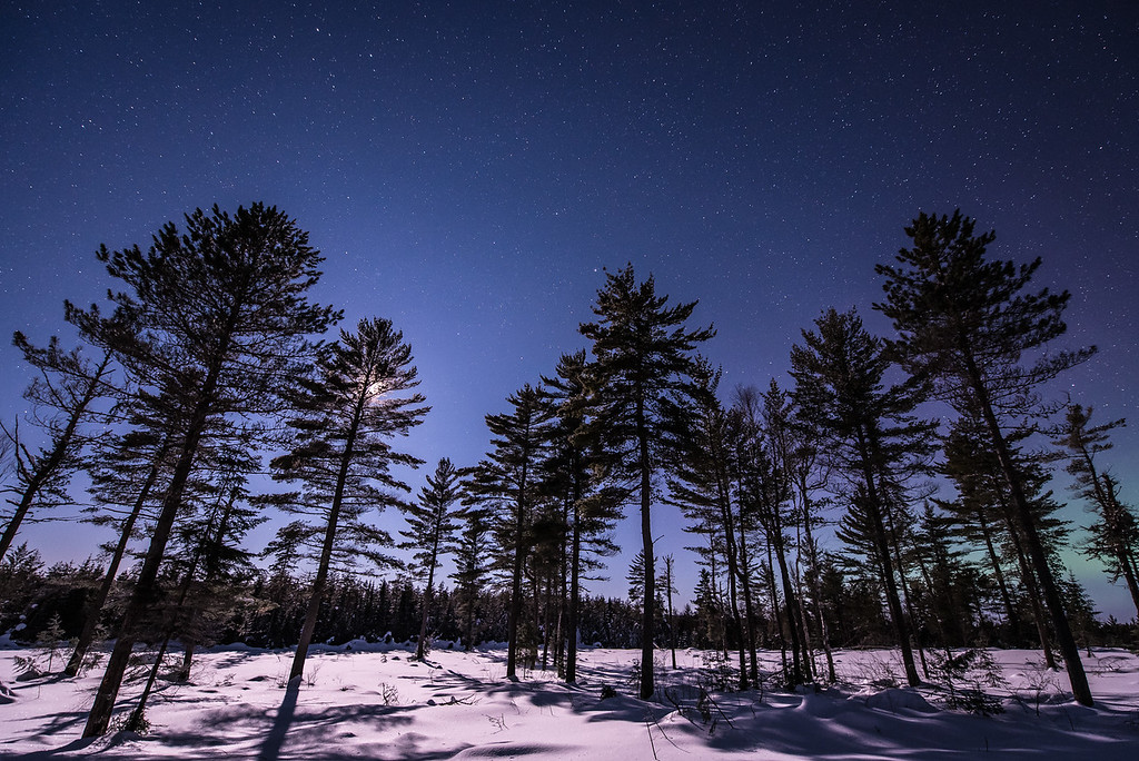 "MOONLIGHT 6804<br /> <br /> ""A Beautiful February Night""<br /> <br /> Superior National Forest, MN"