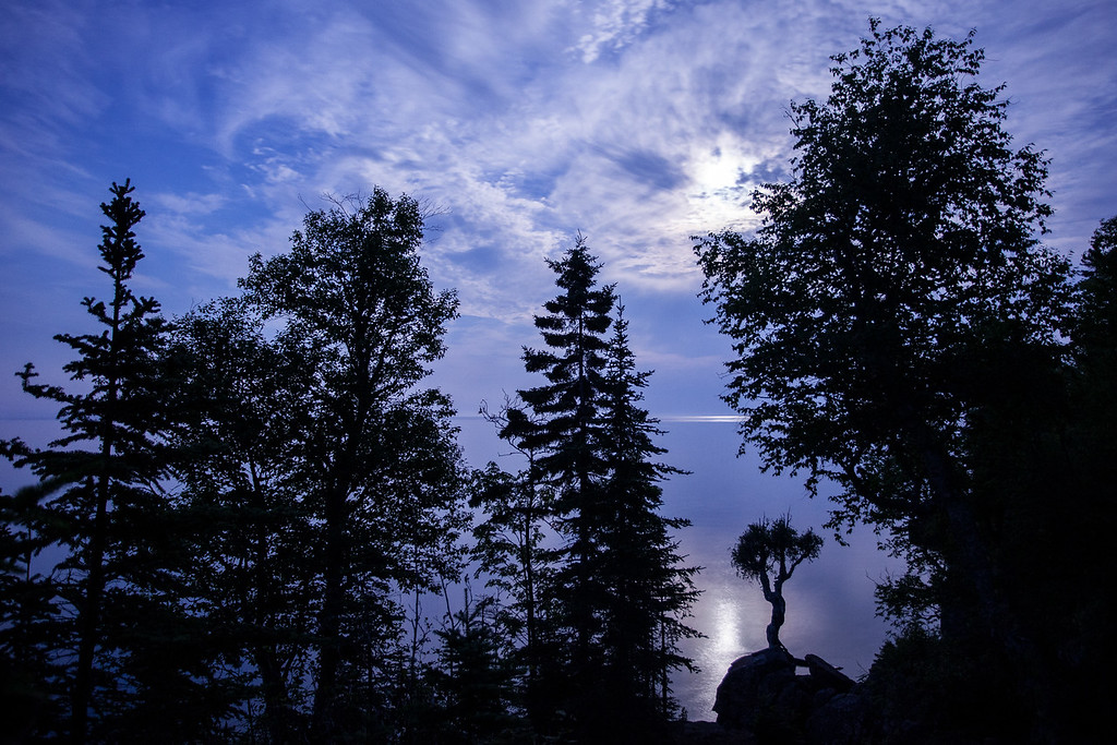 "MOONLIGHT 8957<br /> <br /> ""Pow-Wow Moon over the Spirit Tree"""