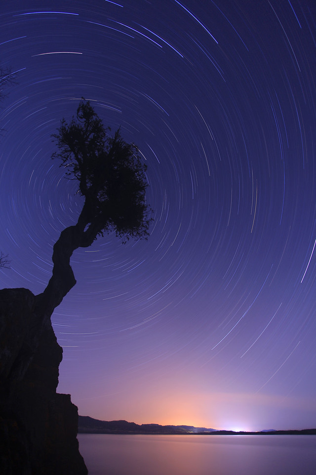 """STAR TRAILS 0194<br /> <br /> """"Spinning Stars over the Spirit Tree""""<br /> <br /> A 1 hour and 16 minute exposure made on May 7, 2011 at 10:18 P.M."""