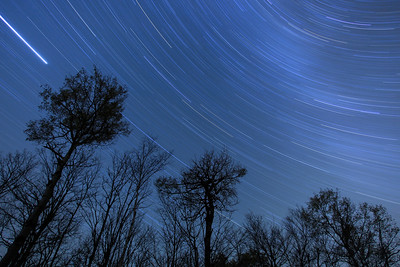 "STAR TRAILS 8859  ""Sweeping Stars""  A 75 minute exposure of the night sky taken on October 29, 2011."