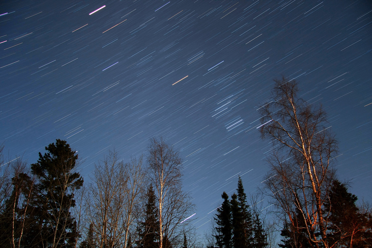 """STAR TRAILS 1134<br /> <br /> """"The sky is falling""""<br /> <br /> The light on the trees in this image is from the full moon, which was behind me and very low in the sky."""