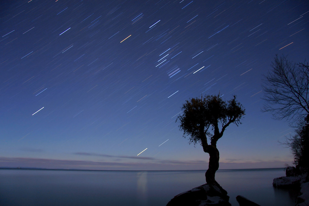 "STAR TRAILS 1130<br /> <br /> ""Orion over the Spirit tree"""