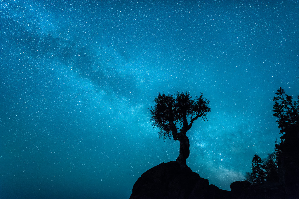 "MILKY WAY 5489<br /> <br /> ""Memorial Weekend Milky Way""<br /> <br /> The Milky Way over the Spirit Tree in Grand Portage, MN on Memorial Day weekend, 2015."