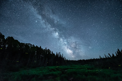 """Milky Way and Fireflies"""