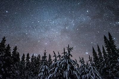 """Winter Night Sky, Northern Minnesota"""