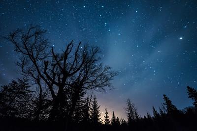 "MILKY WAY 2013  ""Night Magic"""