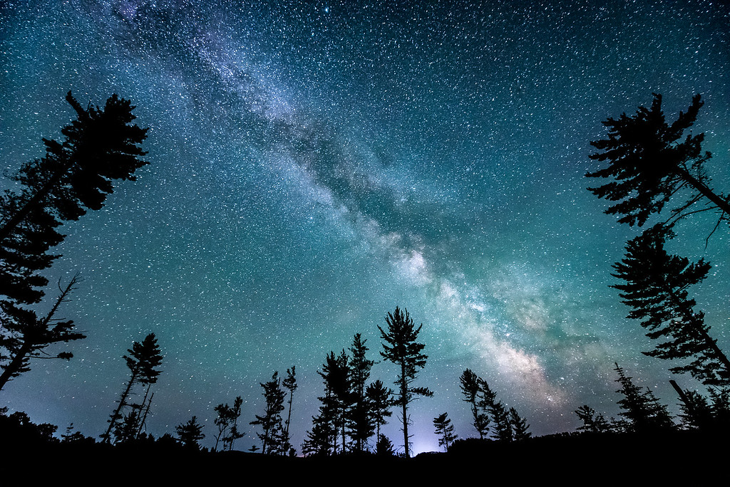 """MILKY WAY 5688<br /> <br /> """"A peaceful night amongst the pines"""""""