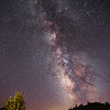 Carson Pass Milky Way