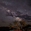 Dead Horse Point Milky Way 2 Utah