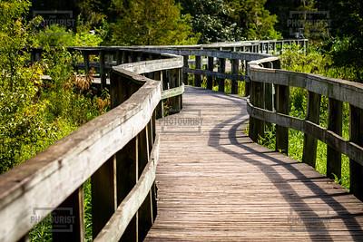 Phinizy Swamp Boardwalk - Augusta GA