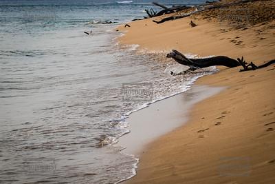 Beach - Maui Hawaii
