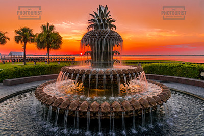 Pineapple Fountain Sunrise - Charleston SC