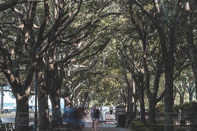 Joe Wiley Waterfront Parl - Charleston SC