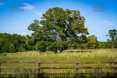 Double Tree - Anderson SC