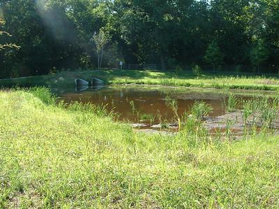 2011-07-27 Ponds