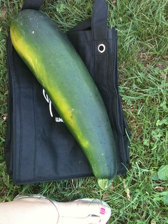 2012-09-07 Veggie Garden