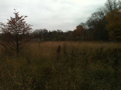 2012-10-26 The Preserve in Autumn