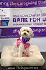 Bark4LifeWeb-6931