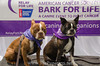Bark4LifeWeb-6819