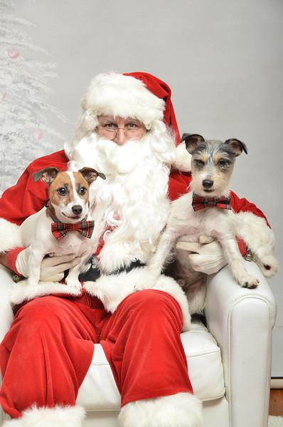 Fetch Santa13-8044