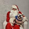 Fetch Santa13-8162
