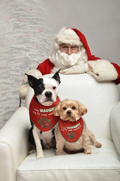 Fetch Santa13-8264