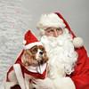 Fetch Santa13-8244