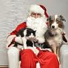 Fetch Santa13-8063