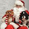 Fetch Santa13-8090