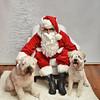 Fetch Santa13-7972