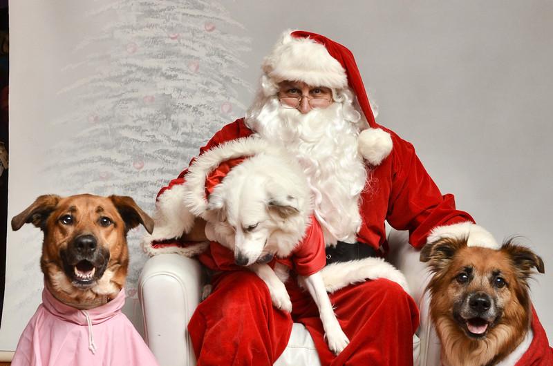 LR-Fetch Santa13-8285