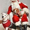 LR-Fetch Santa13-8268