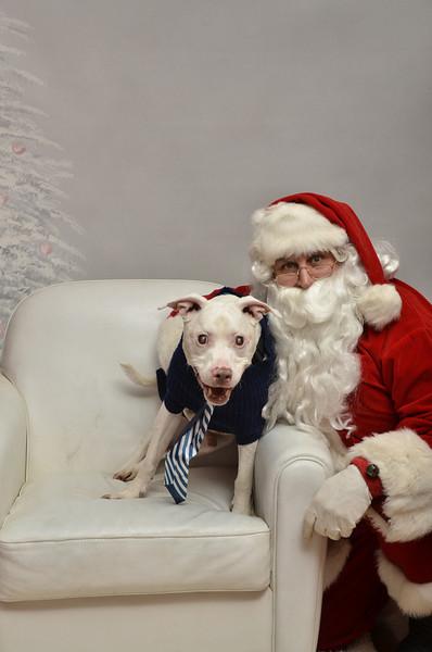 Fetch Santa13-8126