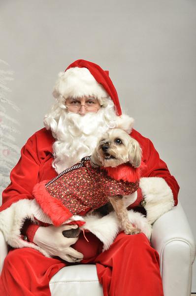 Fetch Santa13-7948